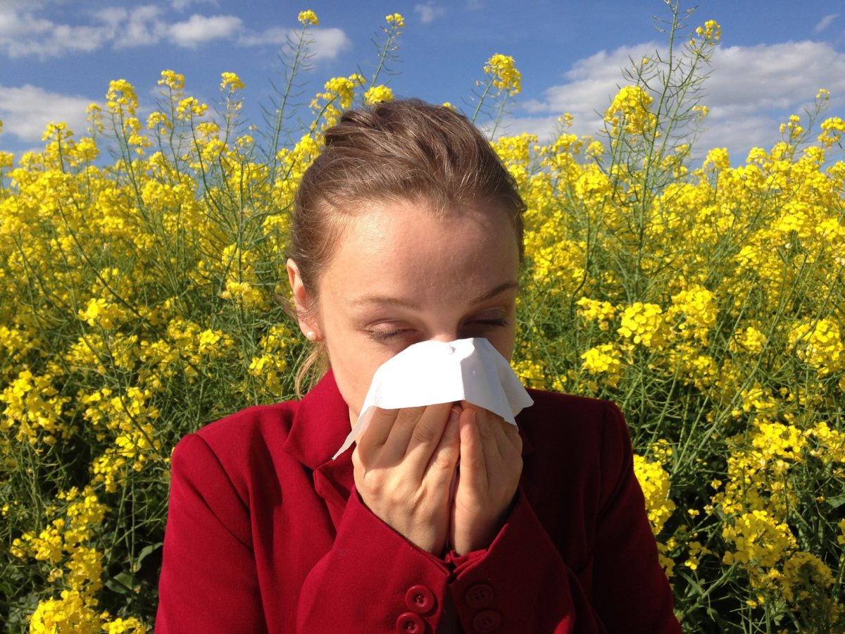 Singing during allergy season